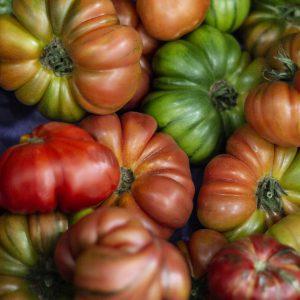 Tomates para Casa del Río
